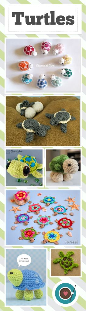 Turtles (Pinterest)