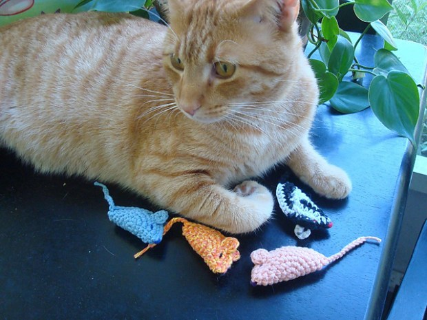 My Cat's Favorite Mouse by Charlotte W.