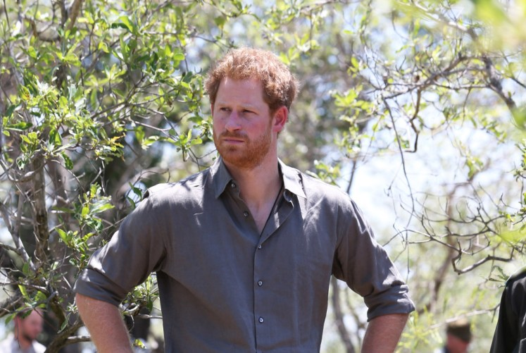 Harry will spend more time in Africa on conservation projects. Picture by Stephen Lock / i-Images
