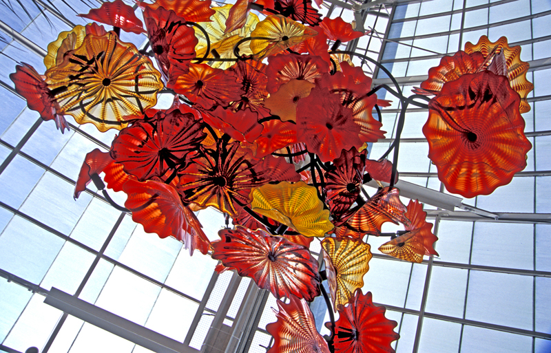 New Chihuly Exhibit To Illuminate New York Botanical Garden In 2017 The Culture Files