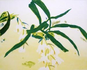 Elizabeth Blackadder, Orchidaceae coelogyne, carborundum print