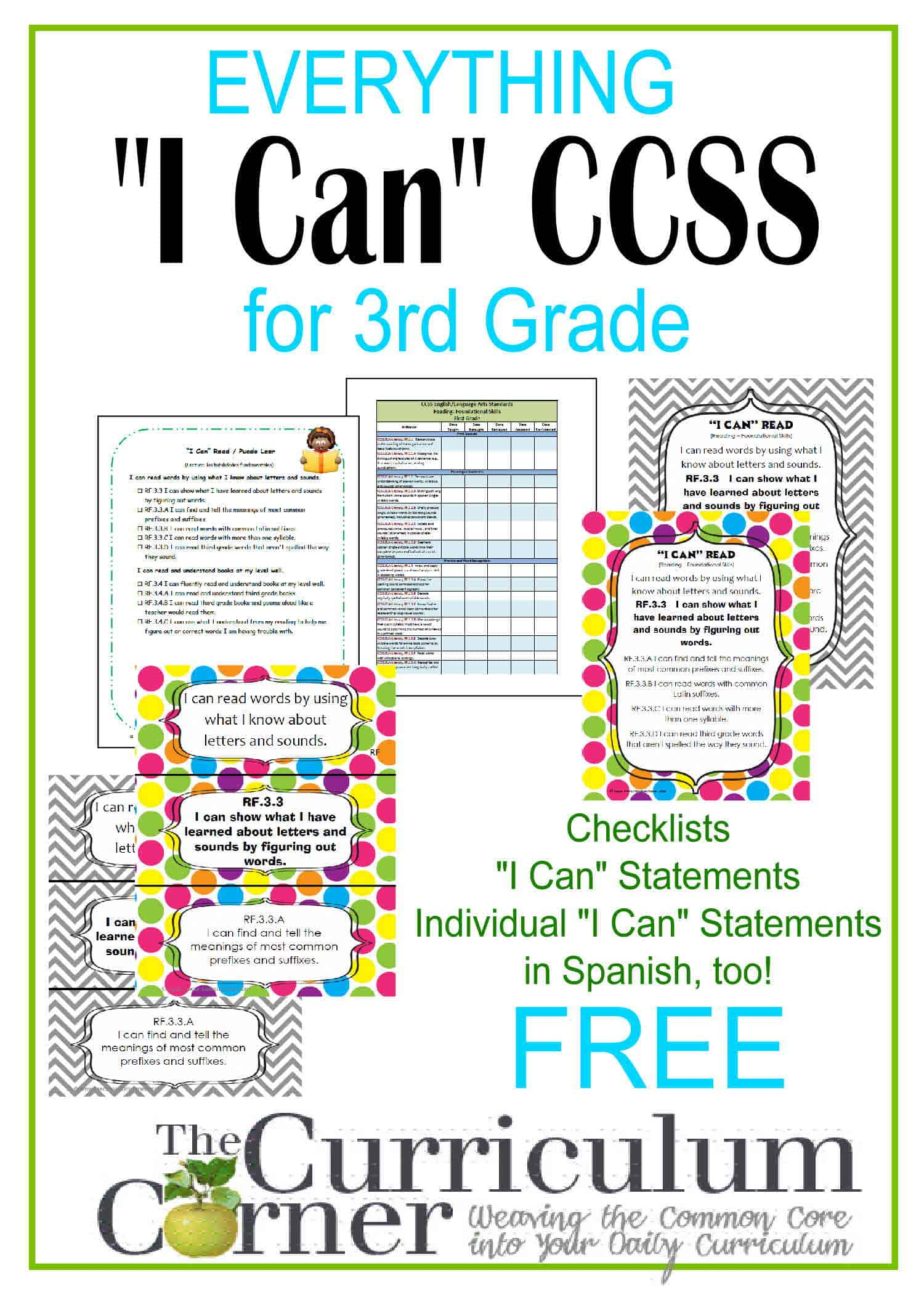 Everything I Can Common Core For 3rd Grade