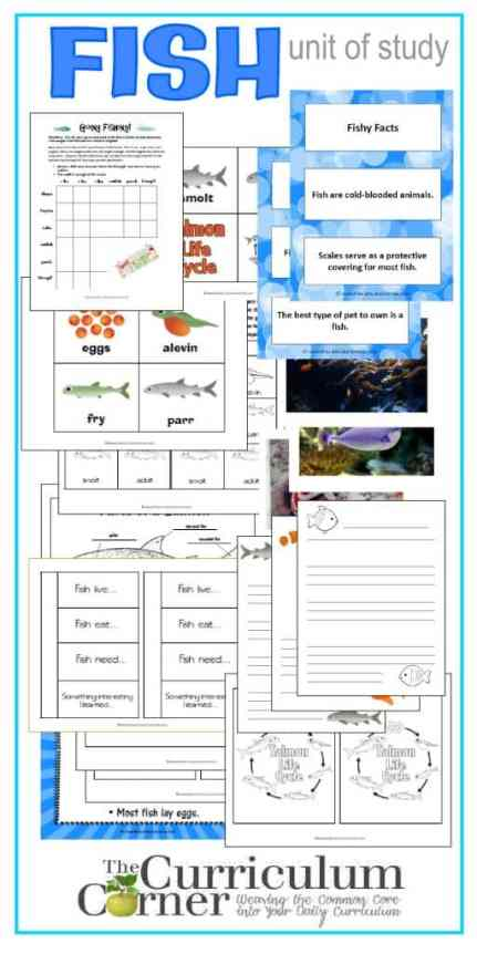 Fish Unit of Study |Science Notebook Pages | Photos | Lined Paper | Fact & Opinion Sort | Logic Problem Free from The Curriculum Corner