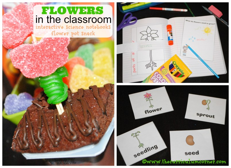 Flowers: Interactive Science Notebook Pages FREE from The Curriculum Corner