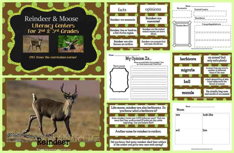 FREE Moose & Reindeer Informational Text Literacy Centers from The Curriculum Corner | 2nd grade, 3rd grade | FREEBIE