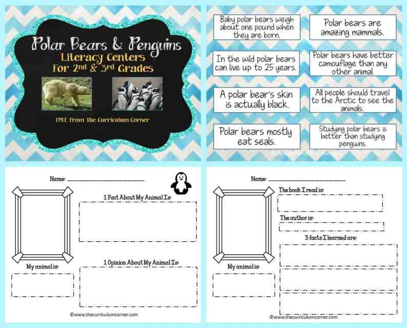 FREE Polar Bears & Penguins informational text literacy centers from The Curriculum Corner FREEBIES   Info Text