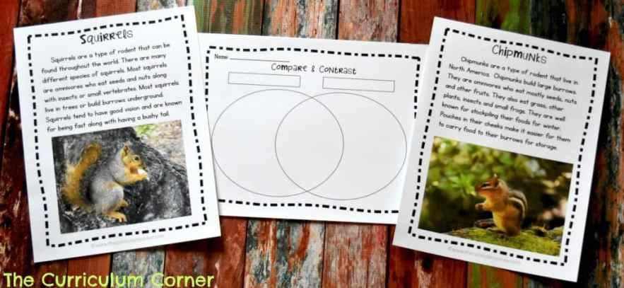 FREE 2nd Grade Sub Plans from The Curriculum Corner | Great for an Emergency!