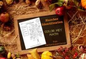 Fall Color Key Math for Number Identification from The Curriculum Corner