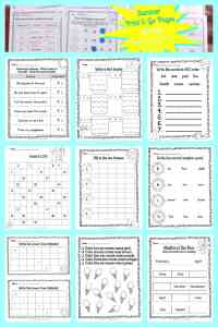 FREE Summer Print & Go Pages | Summer Worksheets from The Curriculum Corner 5