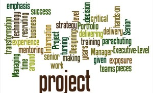 Project Manager CV profile word cloud