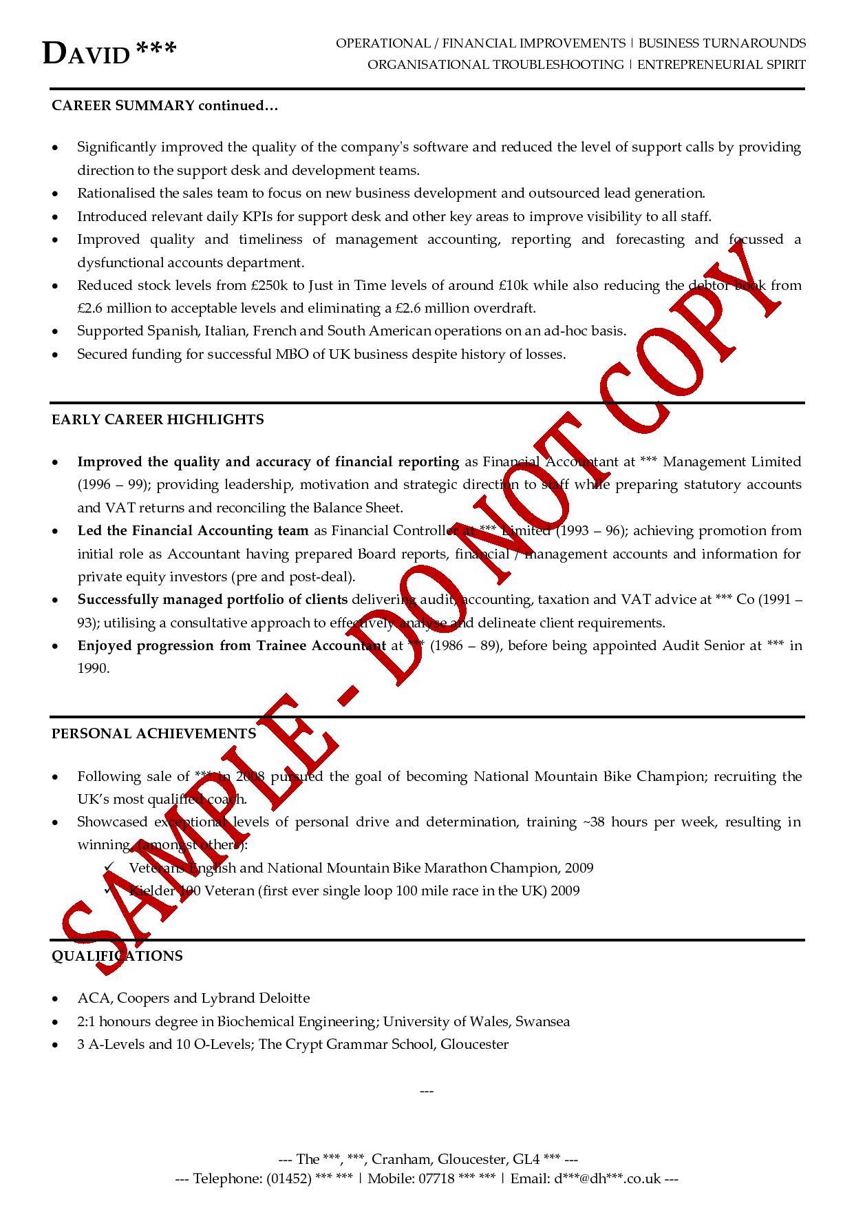 executive senior management cv examples