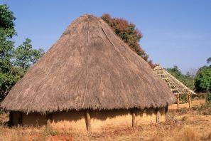 Guinea Blog-Optimized054