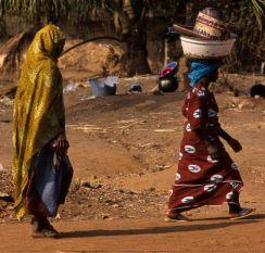 Guinea Blog-Optimized088