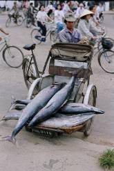 Vietnam 011
