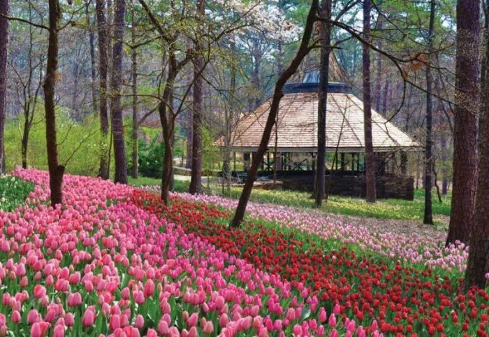 20 best things to do in hot springs arkansas over the weekend the to 10 things to do in hot springs ar mightylinksfo