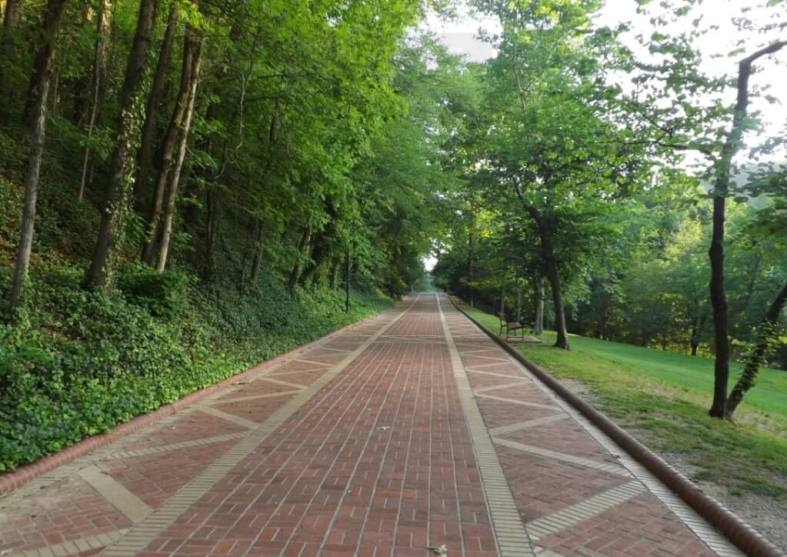things to do in hot springs village ar
