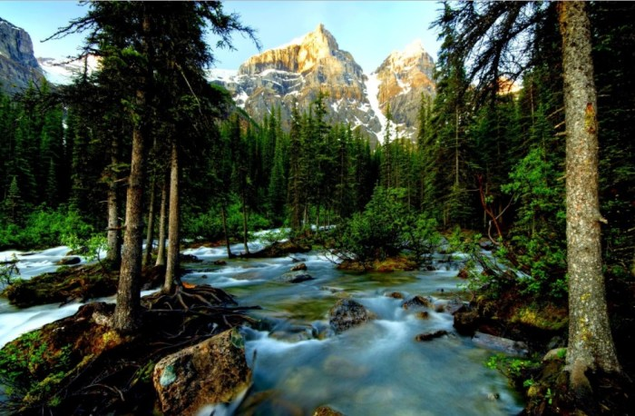 when is the best time to visit banff national park