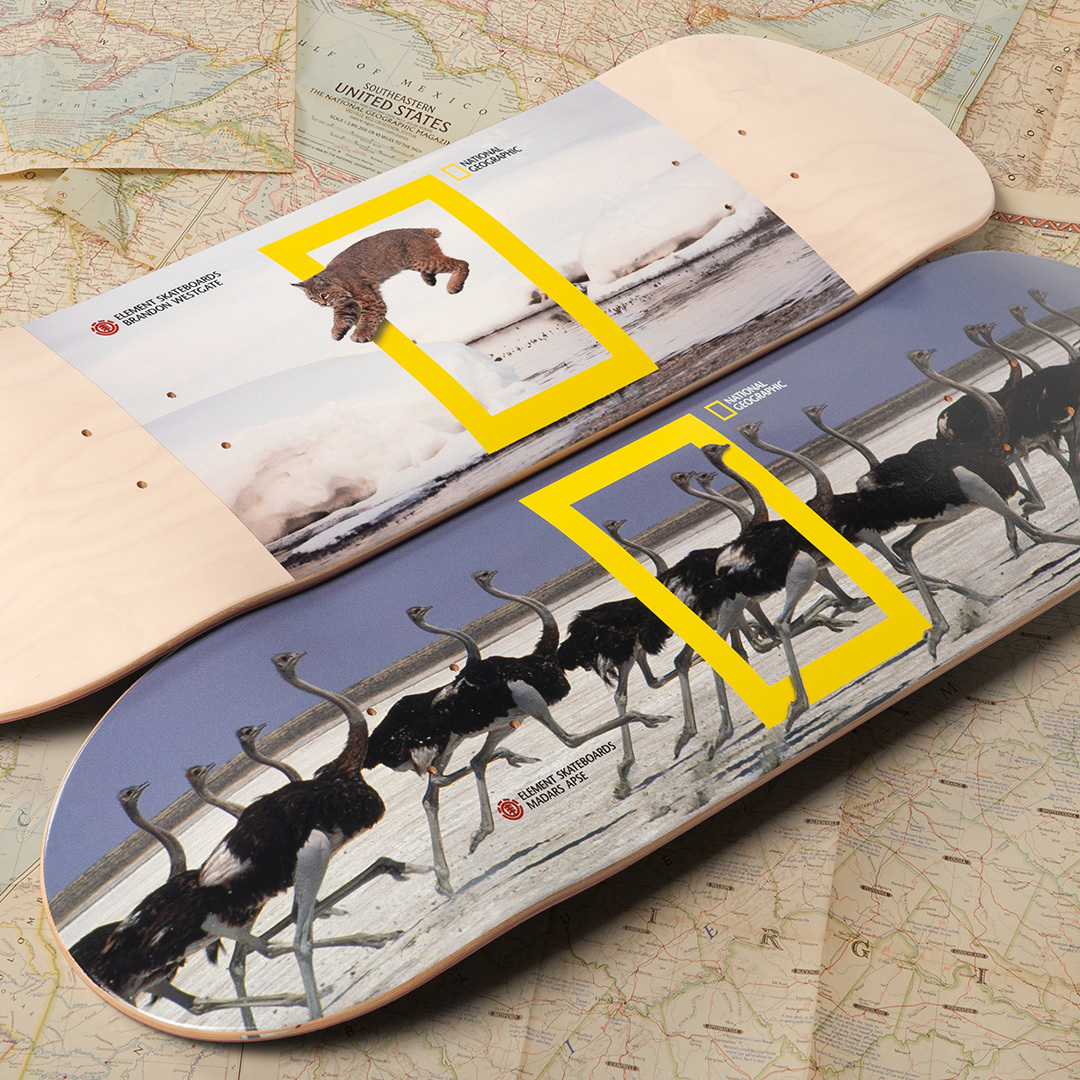 National Geographic Element Skateboards 7
