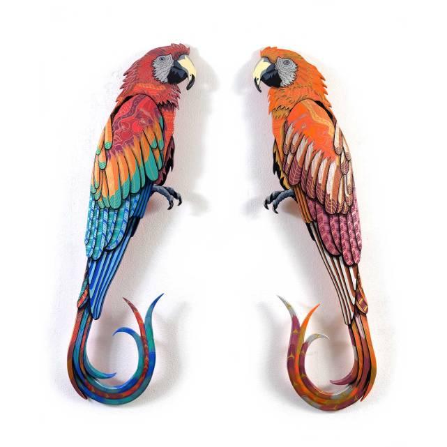 Twice Parrots, 2017