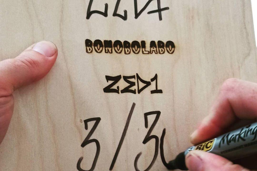 L Accoglienza Skateboard By Zed1 Nonobolabo 1