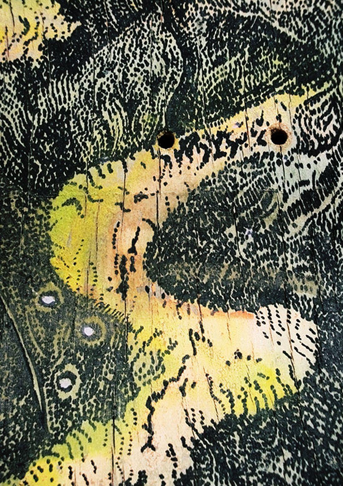 Mythology Of Self Custom Boards By Jager Attila 6