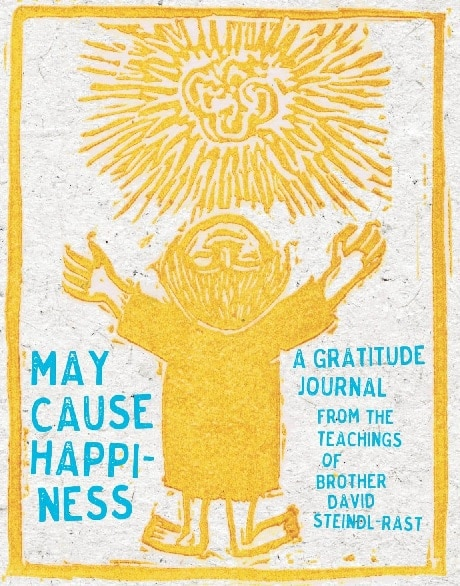 may cause happiness book