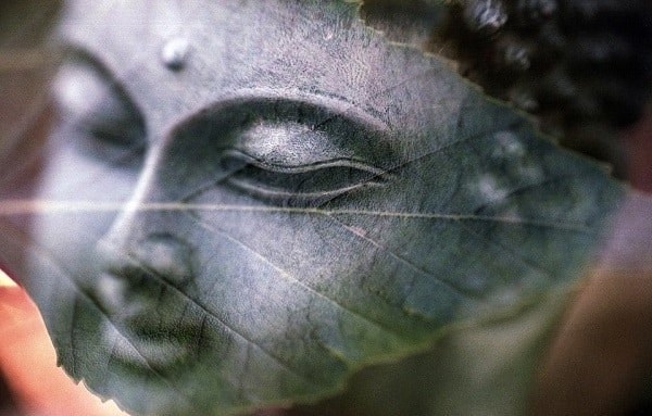How To Stay Mindful All The Time According To Buddha
