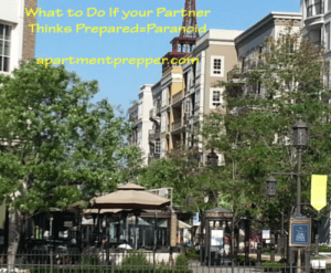 What-to-do-if-you-partner-think-prepared-equals-paranoid2-300x247