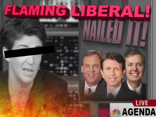 flamingliberal