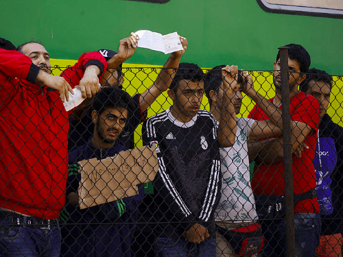syrian refugee wikimedia