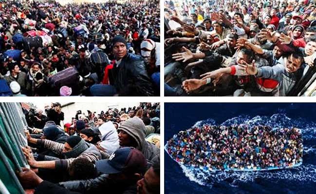 migrantswarm