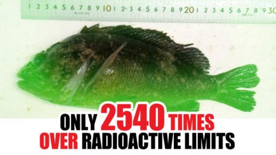 radioactivefish