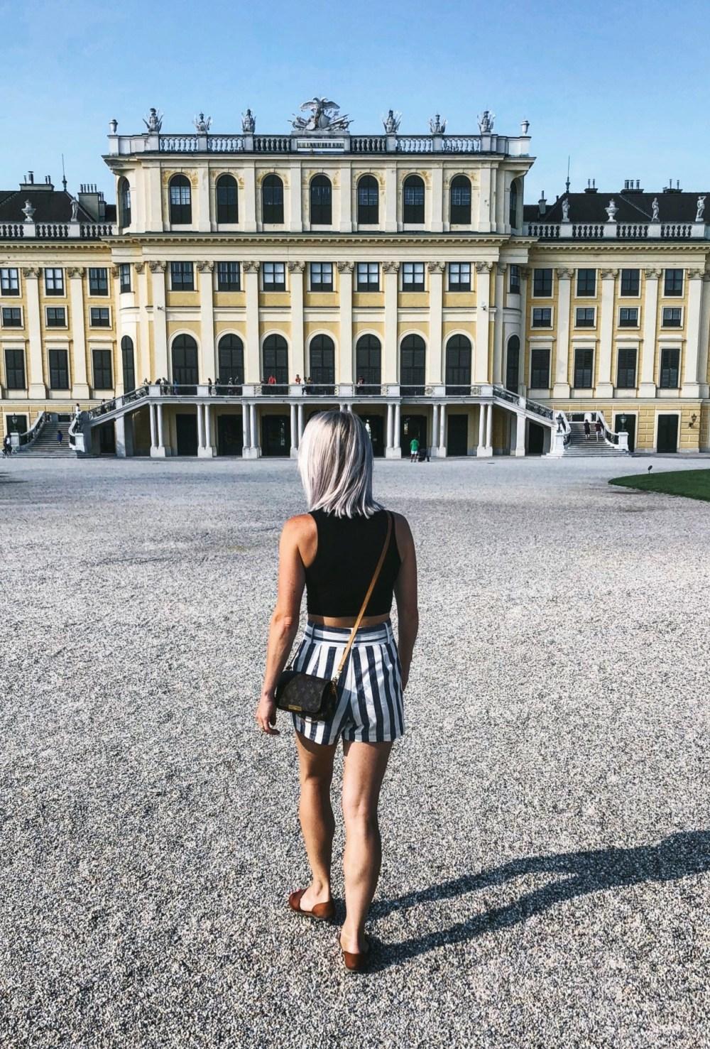 Three Days In Vienna