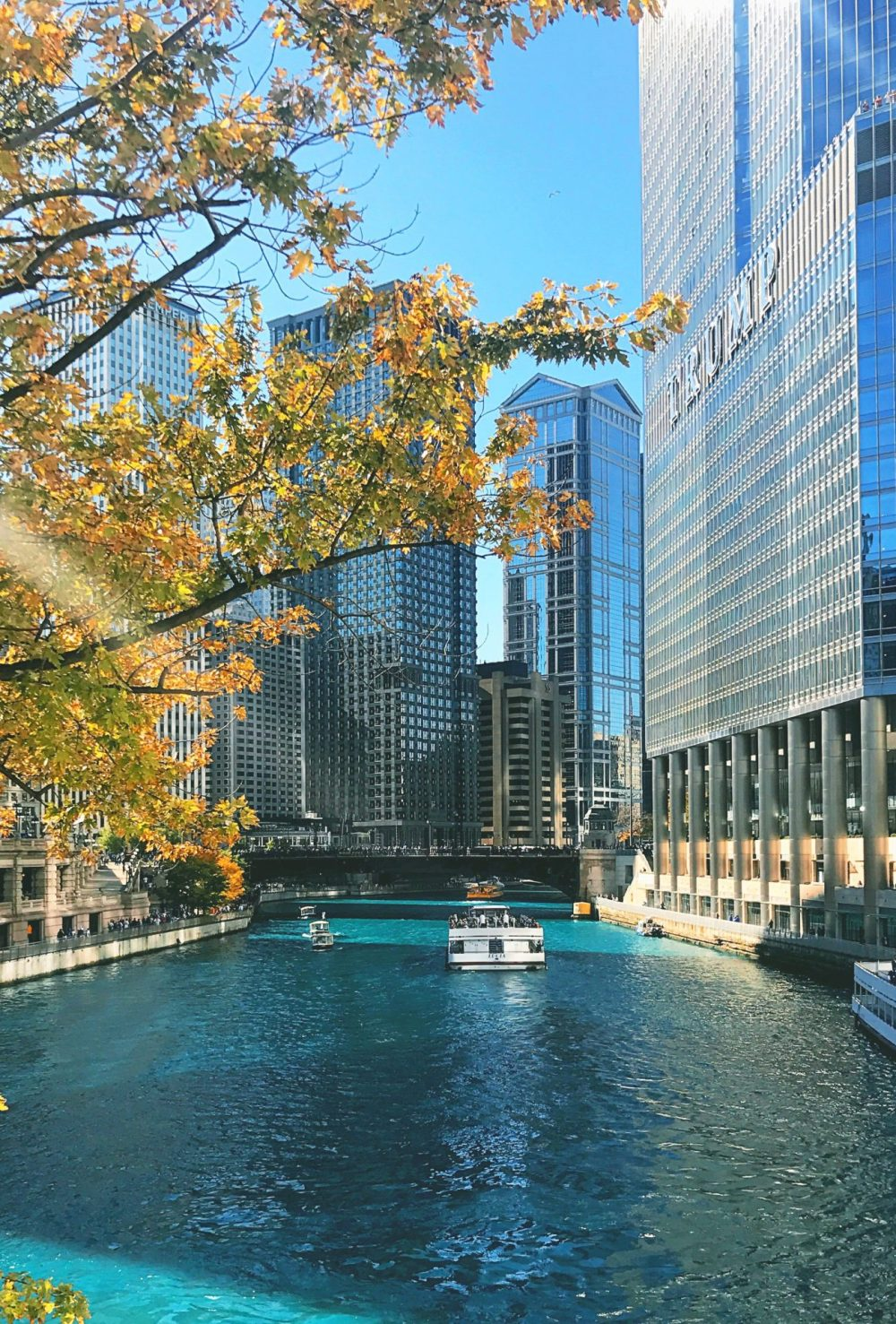 Things To Do In Chicago In The Fall