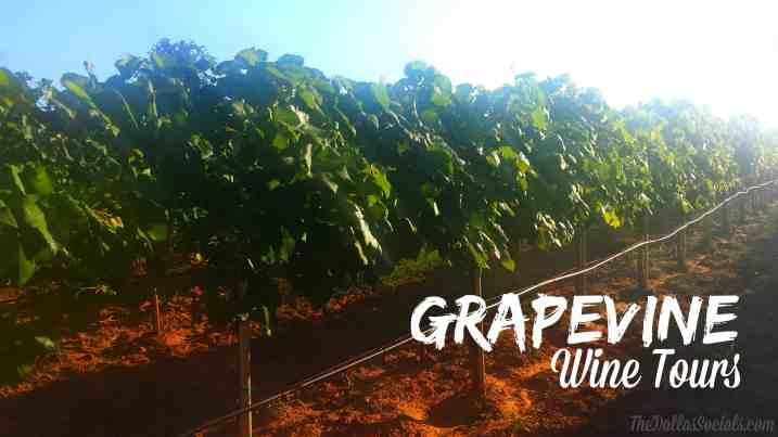 Grapevine Wine Tour Review #Dallas