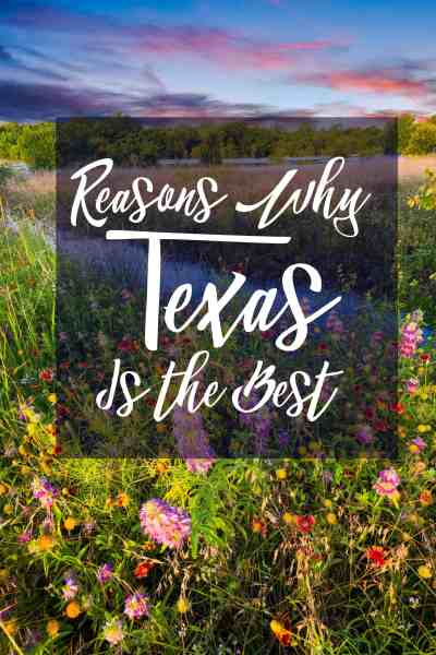 Reasons Why Texas is the Best