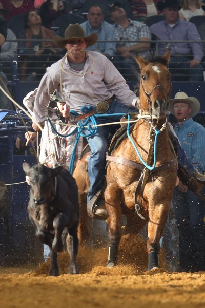 Everything You Need to Know Before Attending The American Rodeo