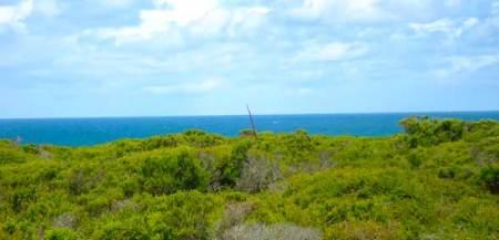 Great Ocean Road Australie