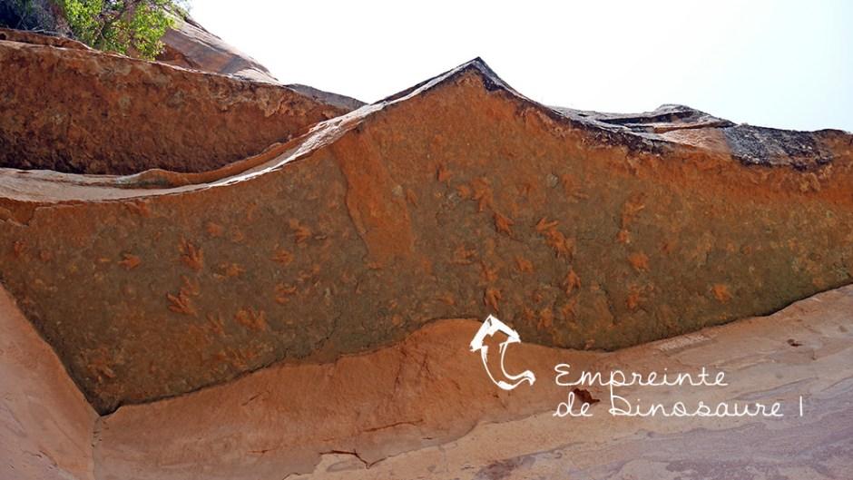 Empreintes de dinosaures Lesotho 2