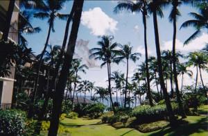 Kapalua Bay Hotel
