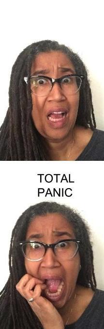 debut novel panic 4