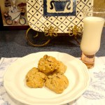 Toasted Coconut and Chocolate Chip Oatmeal Cookies