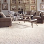 How to Keep Your Carpet Fresh and New