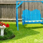 Top Tips and Tricks for Conserving Water in Your Yard