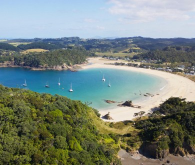 Heading north this weekend? Working Style founder Chris Dobbs shares an insider's guide to the beautiful Tutukaka Coast