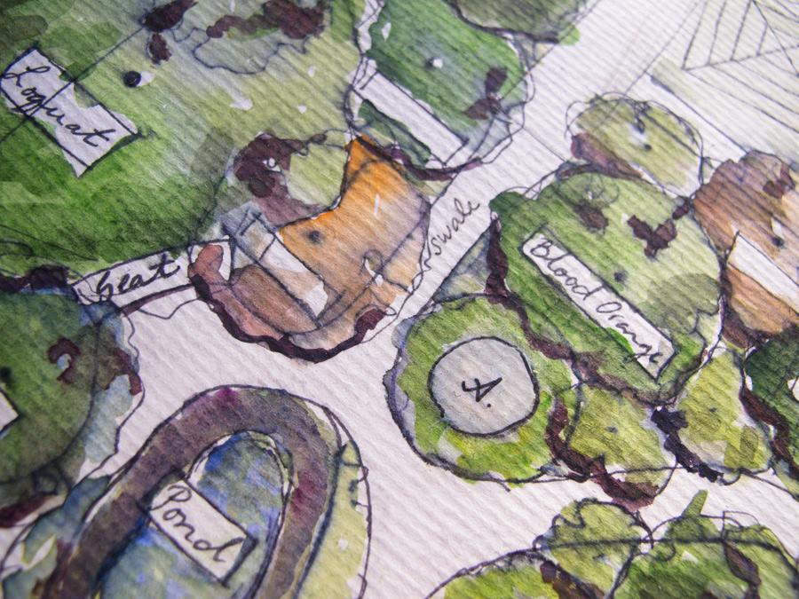 Pascoe vale food forest garden permablitz design for Garden pond overflow design