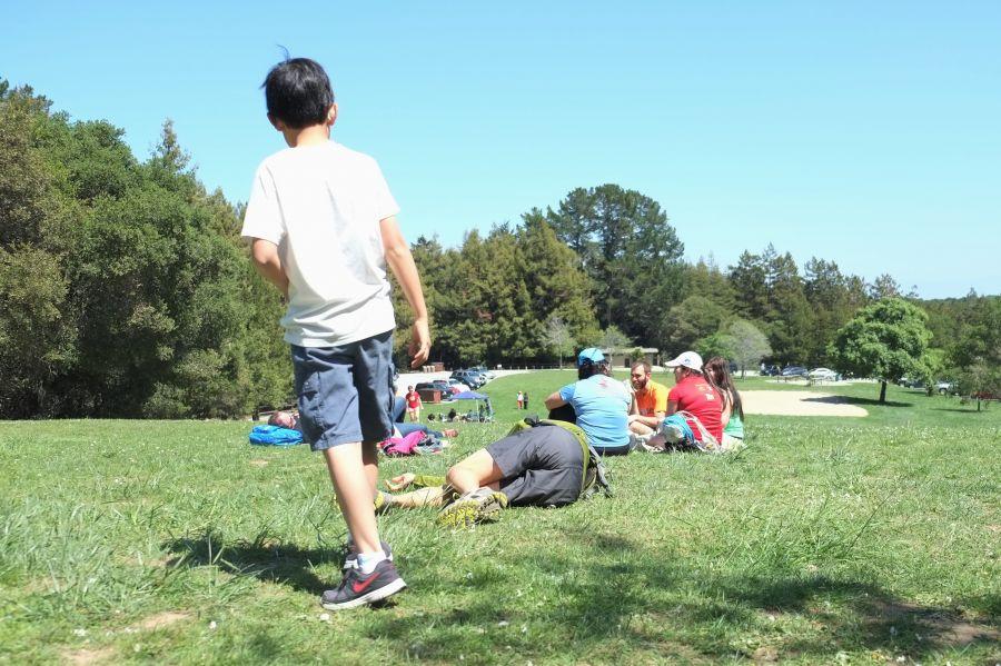 huddart-county-park-ultrarunning-50km (16)