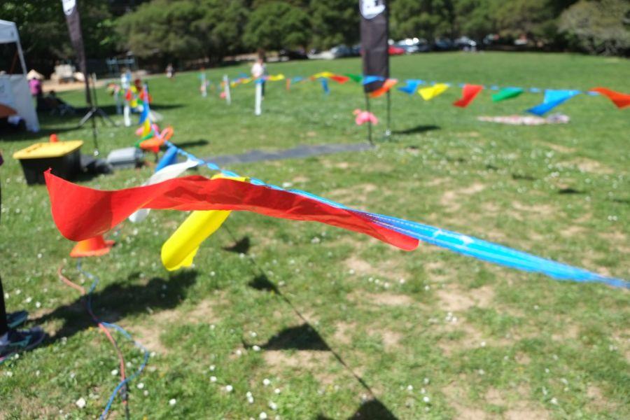 huddart-county-park-ultrarunning-50km (37)