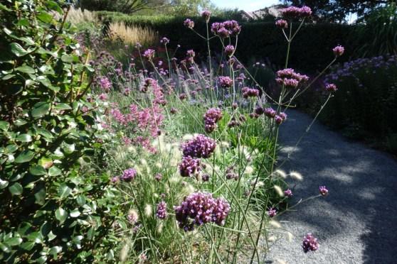 Simon Rickard's Garden