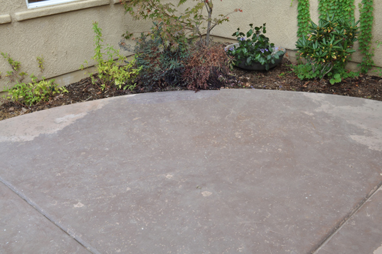 Once Dry the Concrete is Ready for The Design Confidential Patio Rescue and Resurface Prep Work